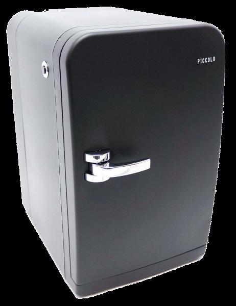 Mini Kühlschrank schwarz für 2x Tetra 1L